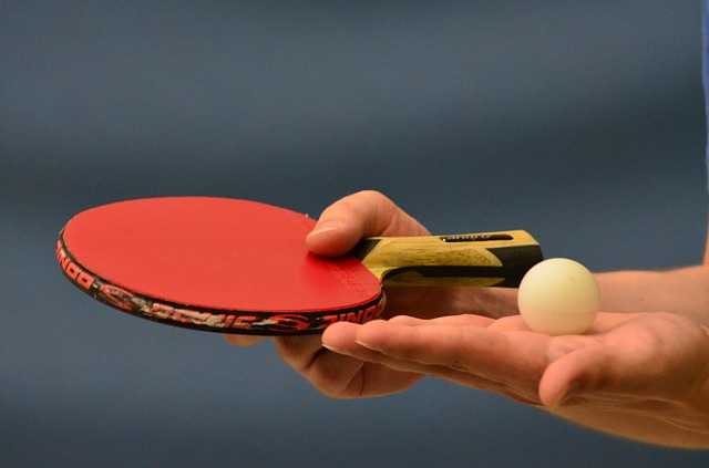 Table tennis games are the great fun even if played virtually on the screen